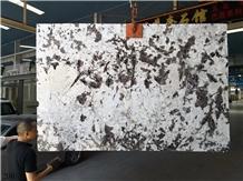 Silver Fox Granite Bianco Antico Aran White Slab