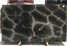 Turtle Illusion Quartzite