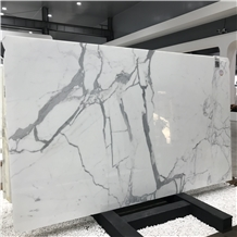Italy Calacatta White Marble Wall and Tile