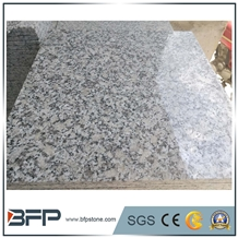 The Most Economic Grey Granite G602 for Floor&Wall