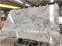 Natural Brazilian Super White Calacatta Quartzite