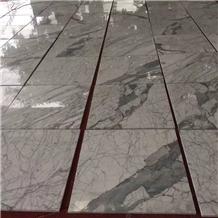 Italy Statuary Marble Slab and Floor Tiles
