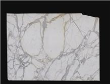 Calacatta Gold Marble Slabs 609