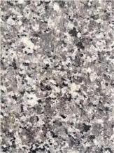 Chinese Swan Blue Granite for Floor Paving Grey