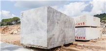 Fior Di Bosco, Grey Fleury Marble Blocks