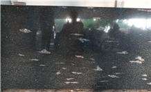 Indian Black Fish Granite