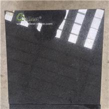 Cheap Price Polished Black Granite Tiles for Floor