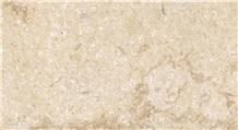 New Shell Marble Tiles, Slabs