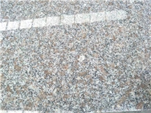 China Cheapest G383 Light Grey Granite