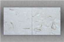 Shell Reef White Limestone Honed Tiles