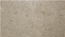 Shell Stone Slabs, Shellstone Tiles