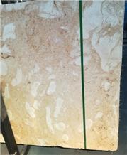 Coral Stone, Coral Limestone