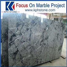 Polished Wolf Grey Marble with Nice Price