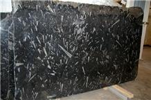 Polished Black Fossil Marble Slab Tile