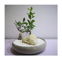 Marble Stone Desk Pots for Office Decoration