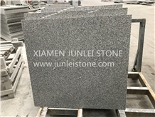 G603 Granite Gray Granite White Granite