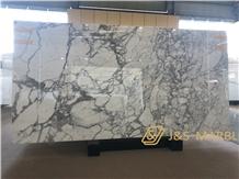 Italian Arabescato Extra White Carrara High Polish