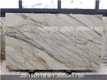 Popular Italy Calacatta Gold Marble Slab