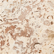 Coralina Gold Coral Stone Slabs & Tiles