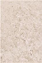 Kanfanar Shells Limestone,Kanfanar Limestone