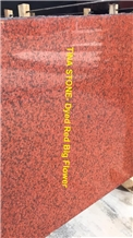 Dyed Red Big Flower Grainte Polished Tiles Slabs