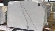 Blanco Statuario Marble Carrara White Marble Slab