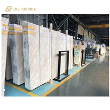 Factory Direct Sale New Sunny Beige Marble