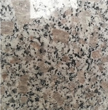 G383 Pearl Flower Granite Slabs,Gray Granite