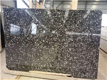 Sea Shell Flower/ China Black Fossil Marble Slabs