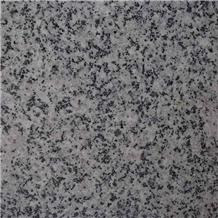 Natanz Polished Silver Granite