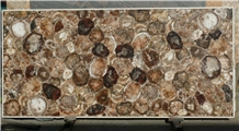 Fossil Brown Stone Petrified Wood Slab
