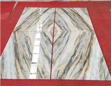 Yinxun Tree Root White Wooden Palissandro Marble