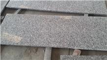 Chinese Swan White Granite Slabs & Tiles