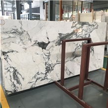 Italy Calacatta Marble Slab and Wall