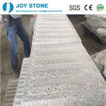 Whole Sale G654 Grey Granite Blind Paving Stone