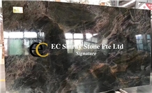 Brazil Black Fantasy Quartzite Slabs & Tiles