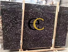China Sea Shell Fossil Black Marble Slabs & Tiles