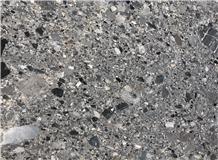 Nature Fossil Grey Limestone Slabs&Tiles