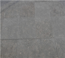 Coquillage, Green and Gray Limestone Honed Tiles