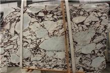 Calacatta Viola Marble Slabs Breccia Medicea