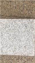 New Pearl White Granite for Floor Tile