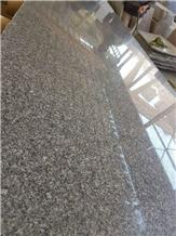 Gray Isis Grey Granite Slabs & Tiles