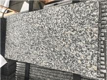 China Bianco Sardo Granite New G602 Granite Tiles