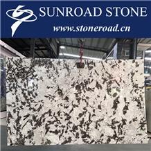 Silver Fox Granite Slabs Brazil Snow Mountain