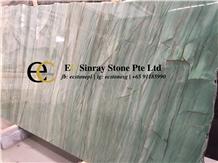 Brazil Pampers Emerald Green Quartzite Slabs Tiles
