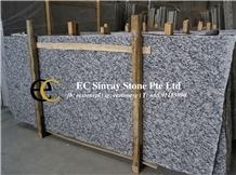 China G418 Water Wave Grey Granite Slabs & Tiles