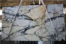 Paonazzo Calacatta Polished Italian Marble