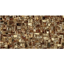 Luxury Wood Fossil Semiprecious Stone