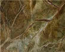 Natural Rain-Forest Green Marble Slabs for Wall