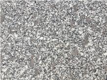 Ezine Yerli Granit- Ezine Grey Granite Slabs & Tiles